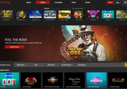 Bodog's site offers everything the gaming enthusiast could wish for